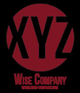 logo-wise-300